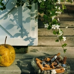 apple-and-cigarettes-2004-roe-ethridge