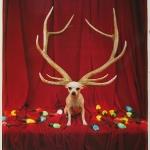 christmas-photo-by-tim-burton